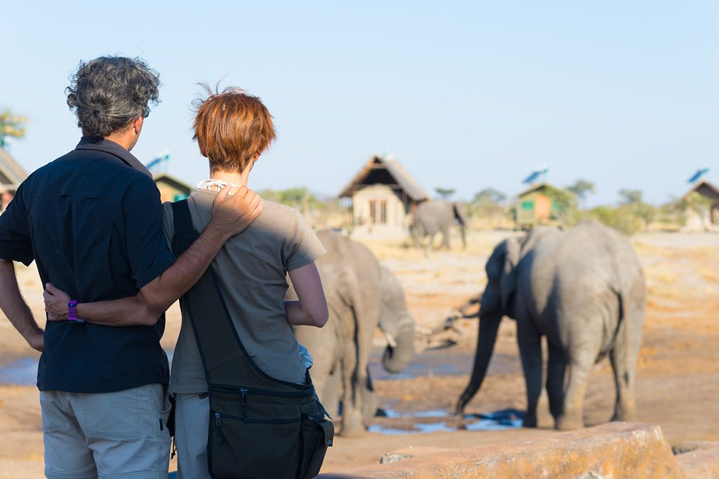 Hugging couple looking at elephant herd drinking from waterhole. Adventure and wildlife safari in Africa.