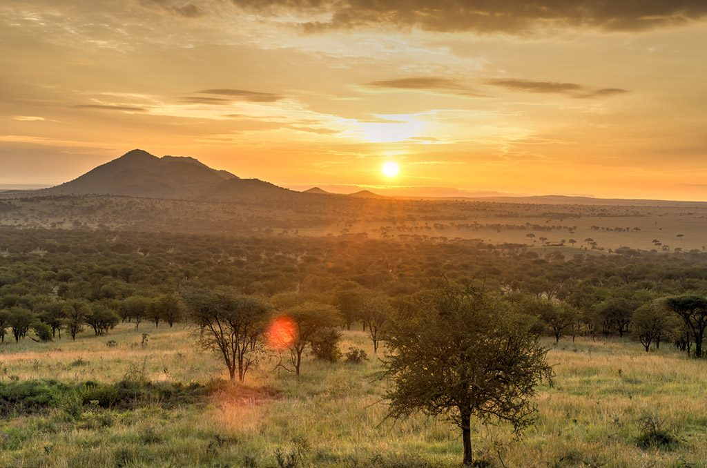 Sunrise in Serengeti national park, landscape in Tanzania.