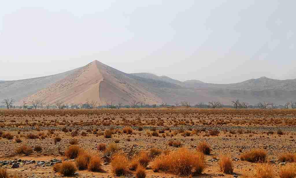 Dune in Namib desert, Namibia