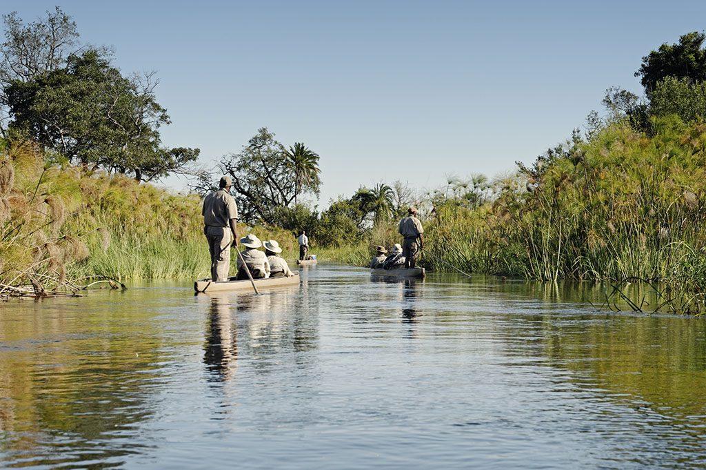 Mokoro trip in Okavanga Delta