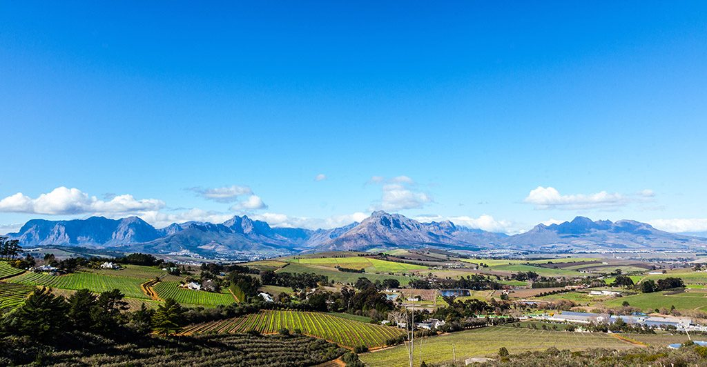 A beautiful landscape of the Cape Winelands