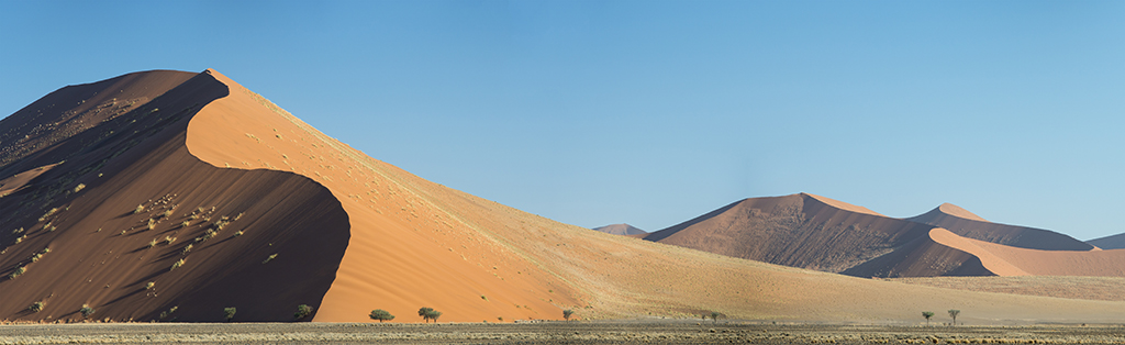 The worlds largest sand dunes at Sossusvlei illuminated by late afternoon sunshine.