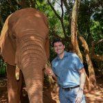 Elephant and tourist at an elephant sanctuary